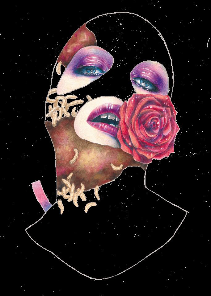 illustration-2.png